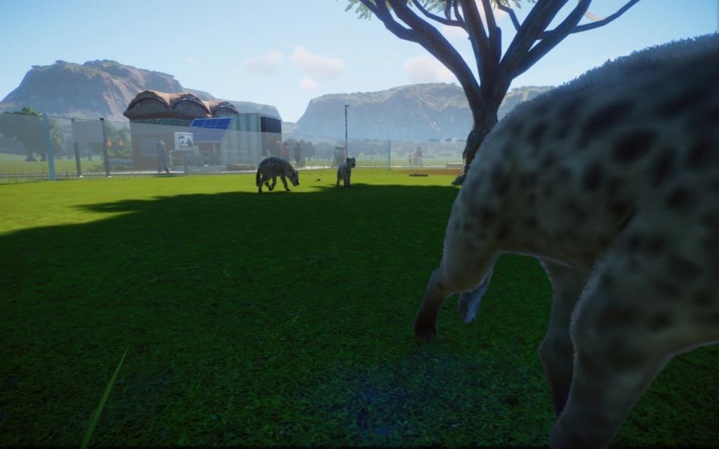 Zoo de Mapete 20200312