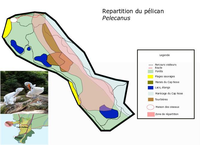 Agence Fédérale de l'Environnement Pelica10