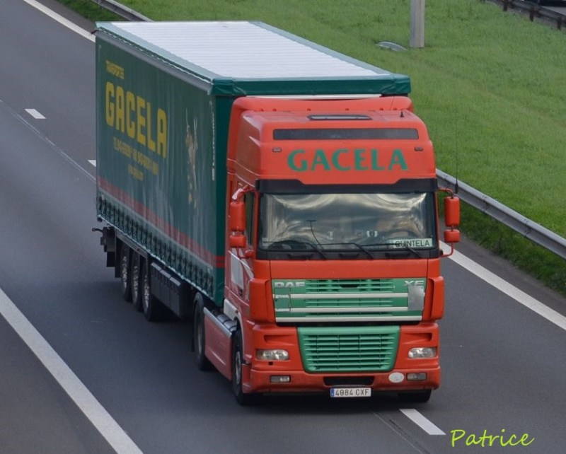 Gacela  (Irun) 120pp10