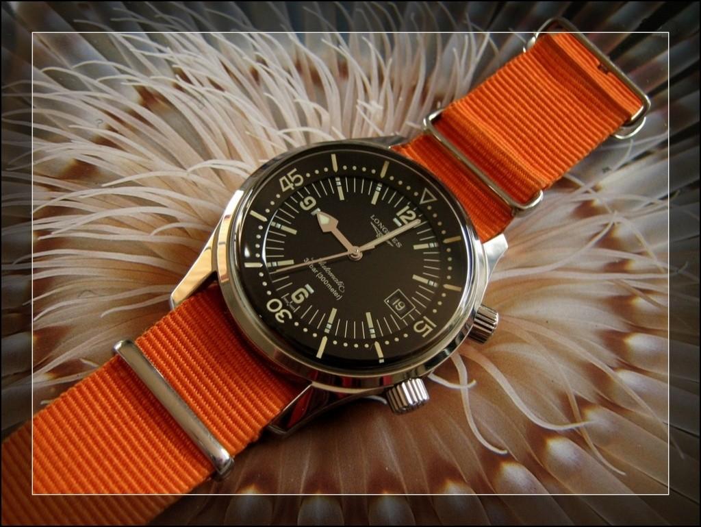 La montre du vendredi 14 Novembre ! Rtimg_11