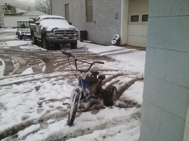 LMM's Bike Trike! 11261410