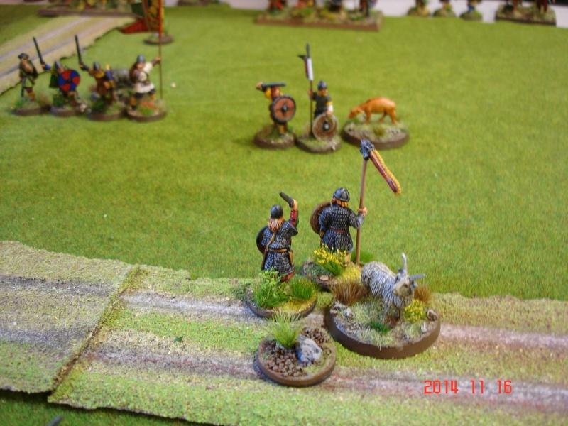 Chevauchée des Dragons de Vaires 2014: La bataille de Maldon Dsc02855