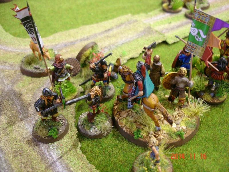 Chevauchée des Dragons de Vaires 2014: La bataille de Maldon Dsc02857