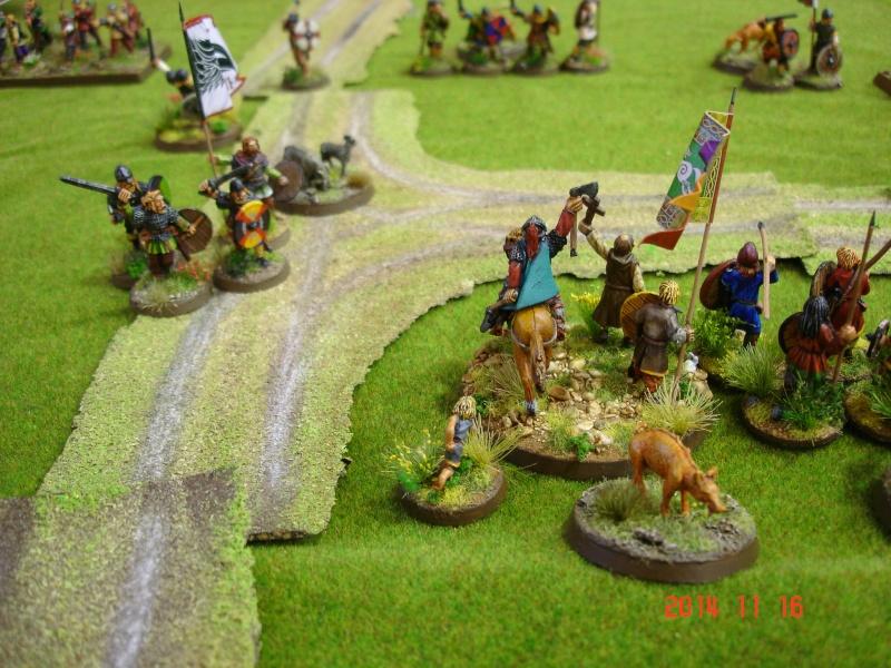Chevauchée des Dragons de Vaires 2014: La bataille de Maldon Dsc02859