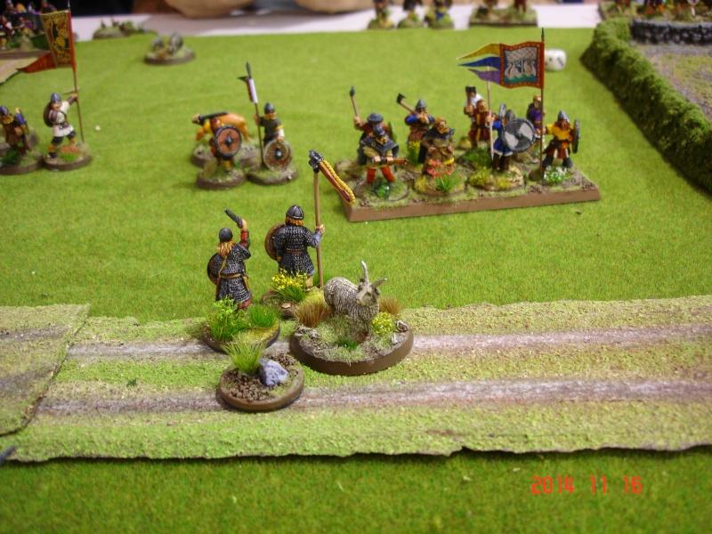 Chevauchée des Dragons de Vaires 2014: La bataille de Maldon Dsc02860