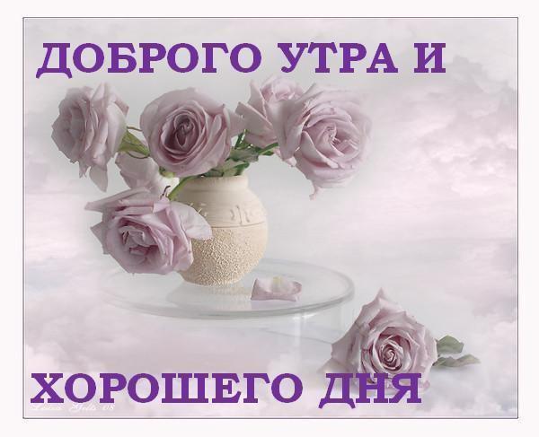 Доброе утро,день,вечер:)))))))) - Страница 2 946c2710