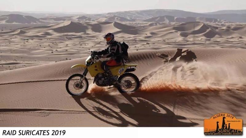 ALGERIE - Raid en Algérie  548c2510