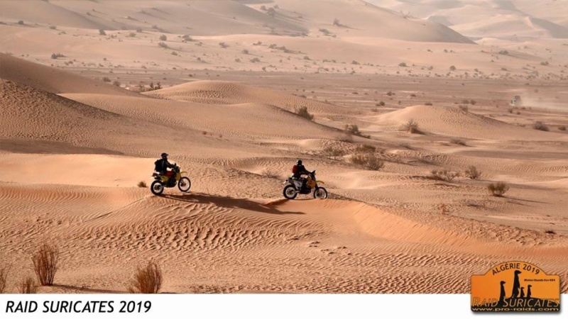 ALGERIE - Raid en Algérie  Img_5012