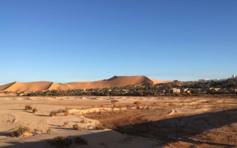 ALGERIE - Raid en Algérie  Img_5018