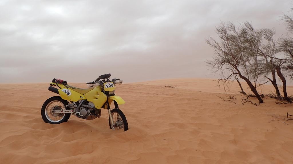 ALGERIE - Raid en Algérie  P1230110
