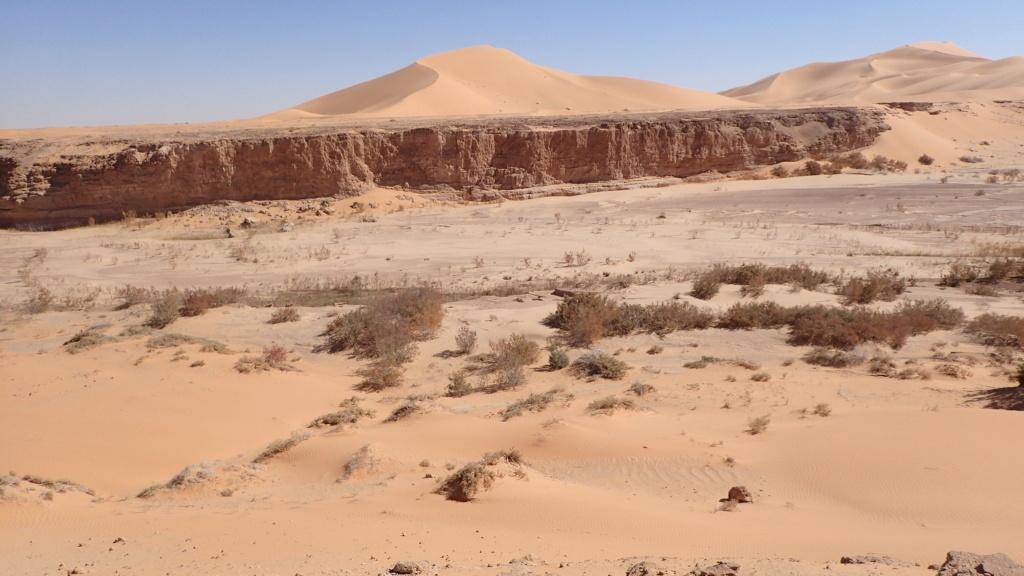 ALGERIE - Raid en Algérie  P1260211