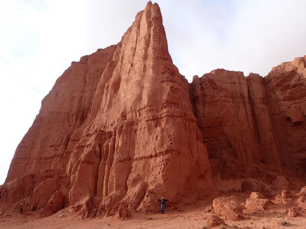 ALGERIE - Raid en Algérie  P1290316