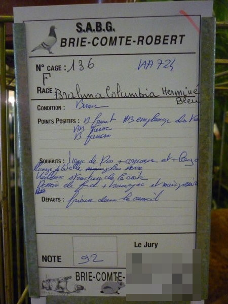 EXPOSITION D AVICULTURE 8 ET 9 NOVEMBRE 2014 BRIE COMTE ROBERT 77 - Page 2 Bcr20124