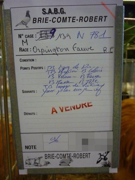 EXPOSITION D AVICULTURE 8 ET 9 NOVEMBRE 2014 BRIE COMTE ROBERT 77 - Page 2 Bcr20149