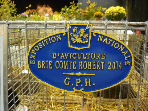 EXPOSITION D AVICULTURE 8 ET 9 NOVEMBRE 2014 BRIE COMTE ROBERT 77 - Page 2 Bcr20203