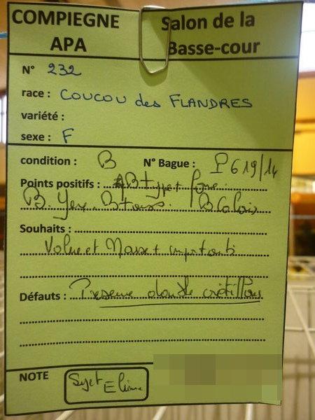 Compiègne 1-2 novembre 2014 Coucou35