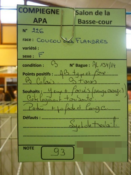 Compiègne 1-2 novembre 2014 Coucou40