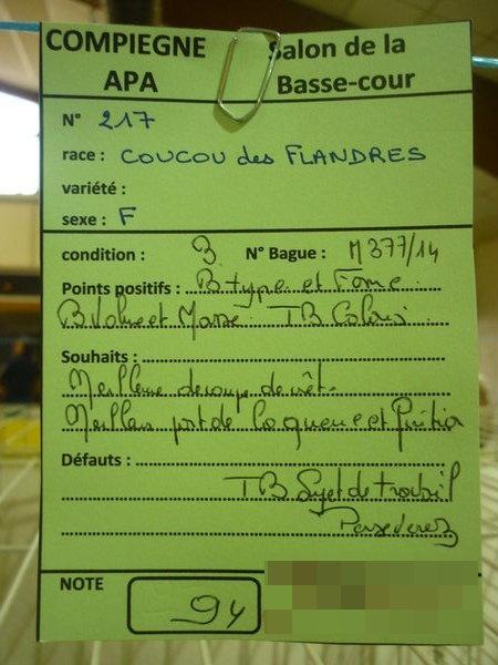 Compiègne 1-2 novembre 2014 Coucou57