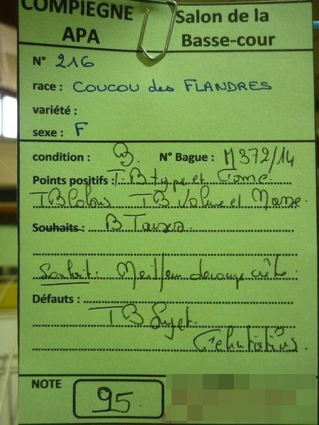 Compiègne 1-2 novembre 2014 Coucou59