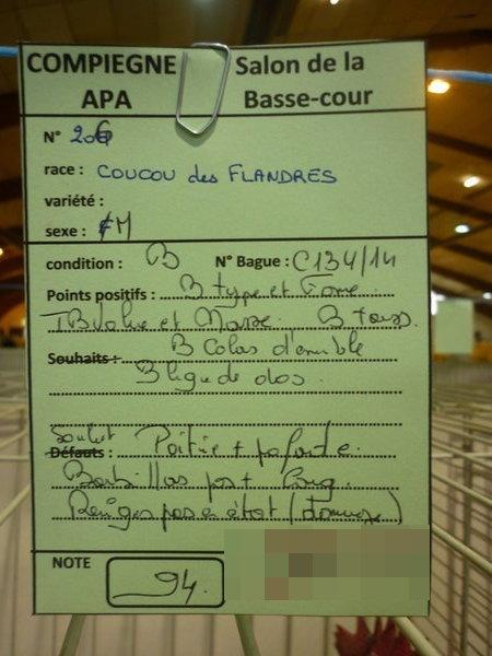 Compiègne 1-2 novembre 2014 Coucou71
