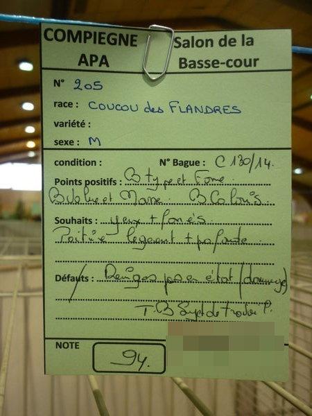 Compiègne 1-2 novembre 2014 Coucou73
