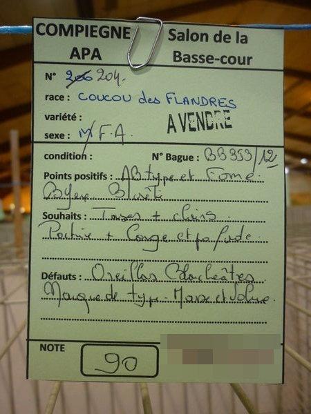 Compiègne 1-2 novembre 2014 Coucou75