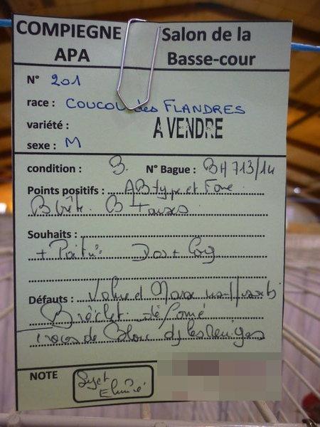 Compiègne 1-2 novembre 2014 Coucou78