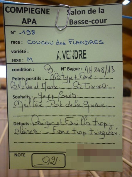 Compiègne 1-2 novembre 2014 Coucou81
