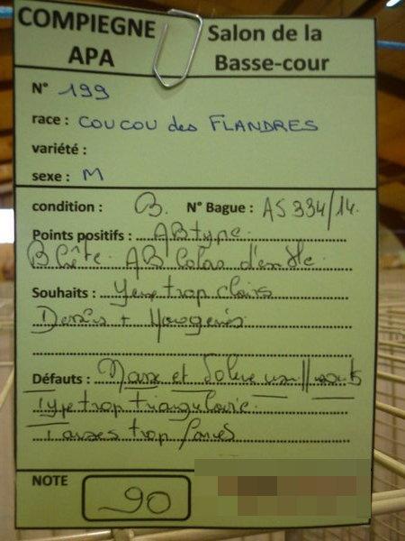 Compiègne 1-2 novembre 2014 Coucou83