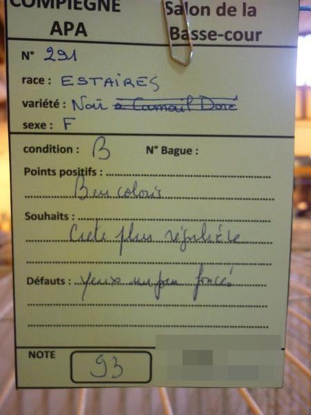Compiègne 1-2 novembre 2014 Estair11
