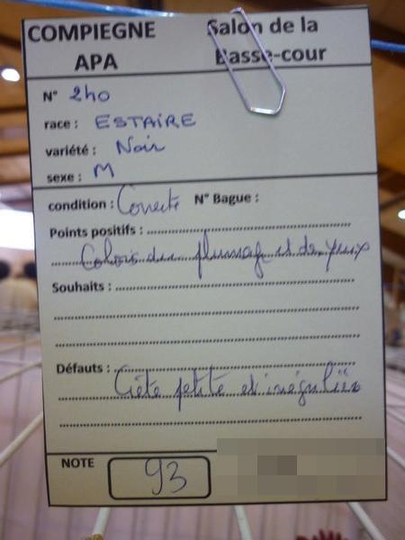 Compiègne 1-2 novembre 2014 Estair13