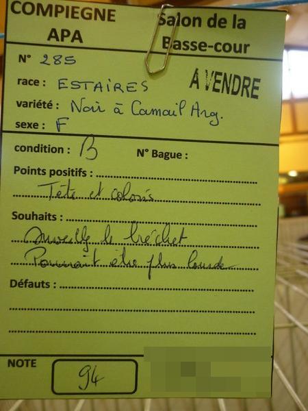 Compiègne 1-2 novembre 2014 Estair22