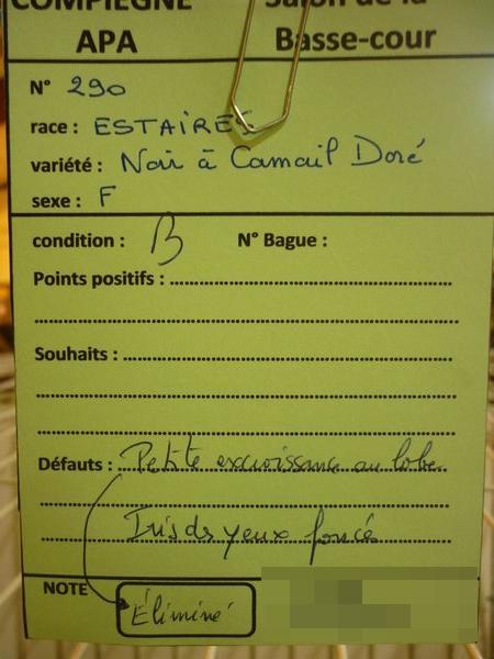 Compiègne 1-2 novembre 2014 Estair30