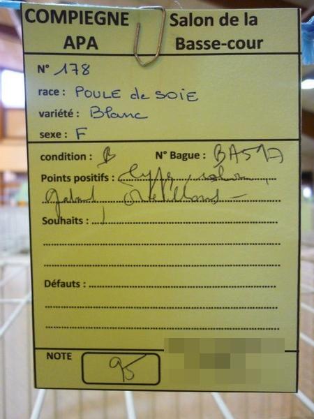 Compiègne 1-2 novembre 2014 Poule_15
