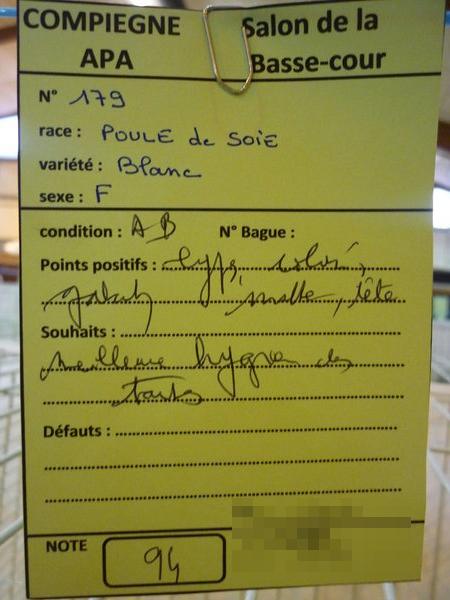 Compiègne 1-2 novembre 2014 Poule_17