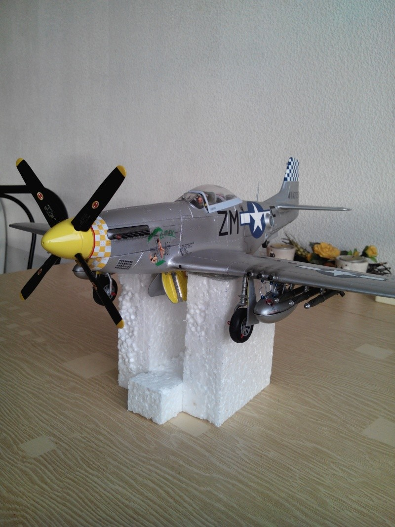 P51D.mustang.1/24.kit heller. - Page 21 Img_2013