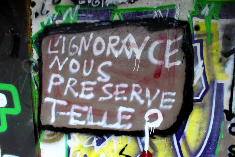 Les Rencontres Zèbres d'Orléans sont les meilleures de tout le Forum (derrière celles de Saint-Etienne) Pwr10