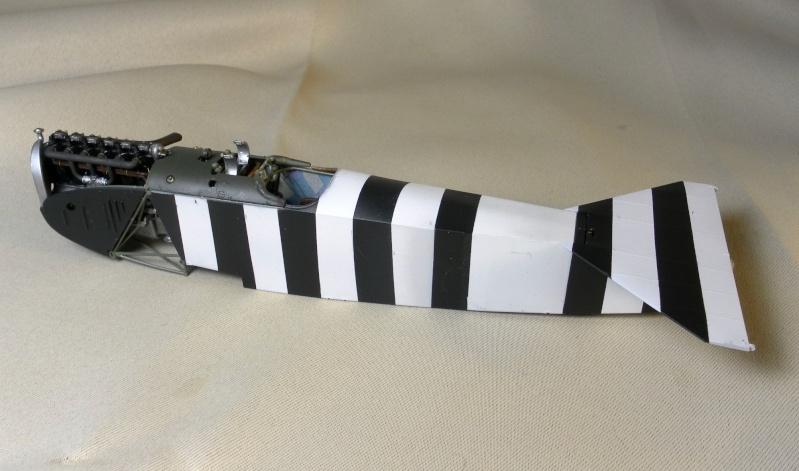 fokker DVIIF  wingnut wing 1/32 316