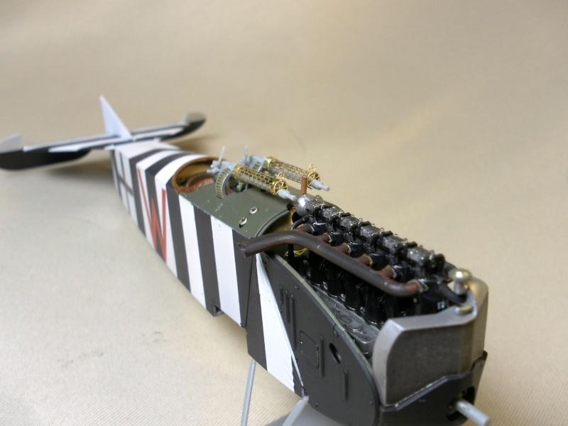 fokker DVIIF  wingnut wing 1/32 412