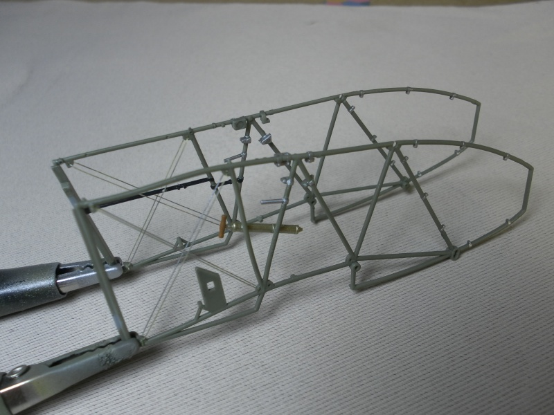 fokker DVIIF  wingnut wing 1/32 Sam_2111