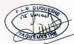 * DUQUESNE (1970/2007) * 96-02_10