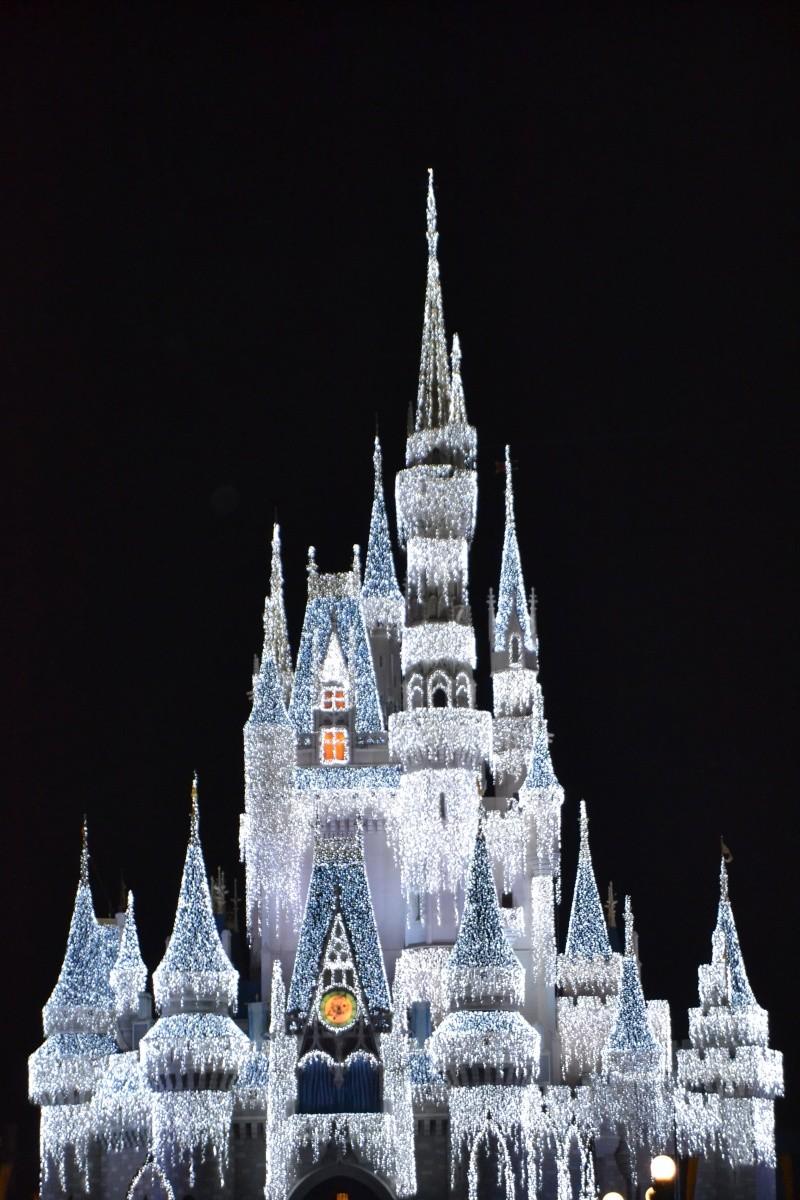 On fête nos 4ans de mariage a WDW puis Disney cruise line - Page 2 Dsc_0618
