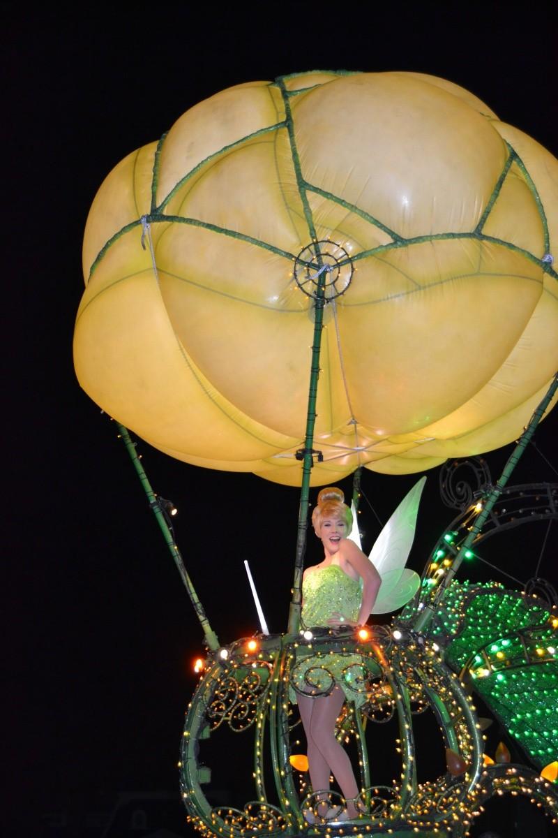 On fête nos 4ans de mariage a WDW puis Disney cruise line - Page 2 Dsc_0619