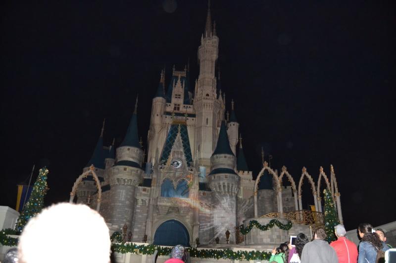 On fête nos 4ans de mariage a WDW puis Disney cruise line - Page 2 Dsc_0627