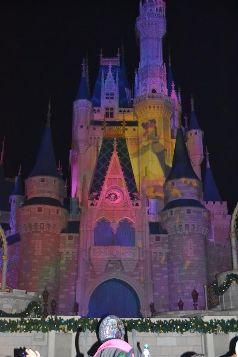 On fête nos 4ans de mariage a WDW puis Disney cruise line - Page 2 Dsc_0628