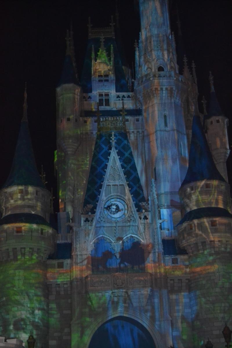 On fête nos 4ans de mariage a WDW puis Disney cruise line - Page 2 Dsc_0629