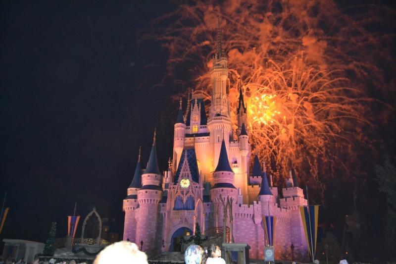 On fête nos 4ans de mariage a WDW puis Disney cruise line - Page 2 Dsc_0710