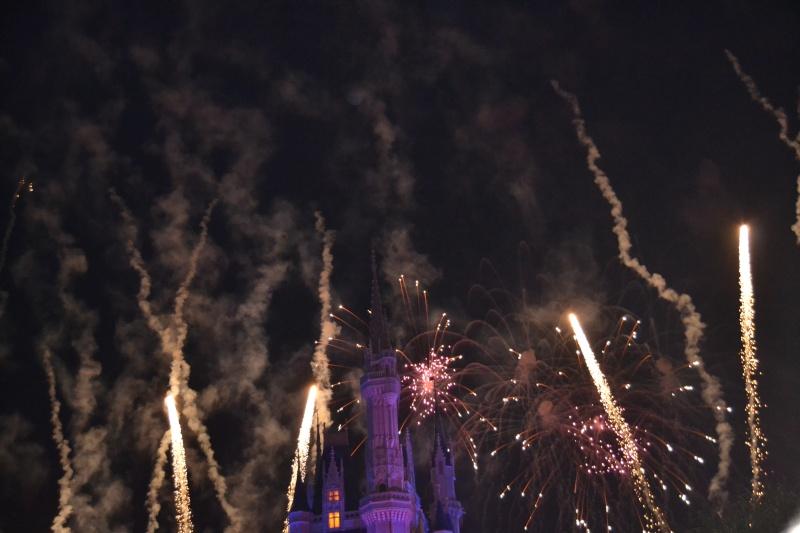 On fête nos 4ans de mariage a WDW puis Disney cruise line - Page 2 Dsc_0711