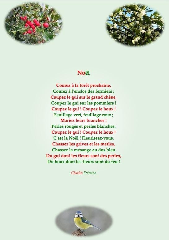 Météo de l'année 2014 - Page 32 Noyl_211