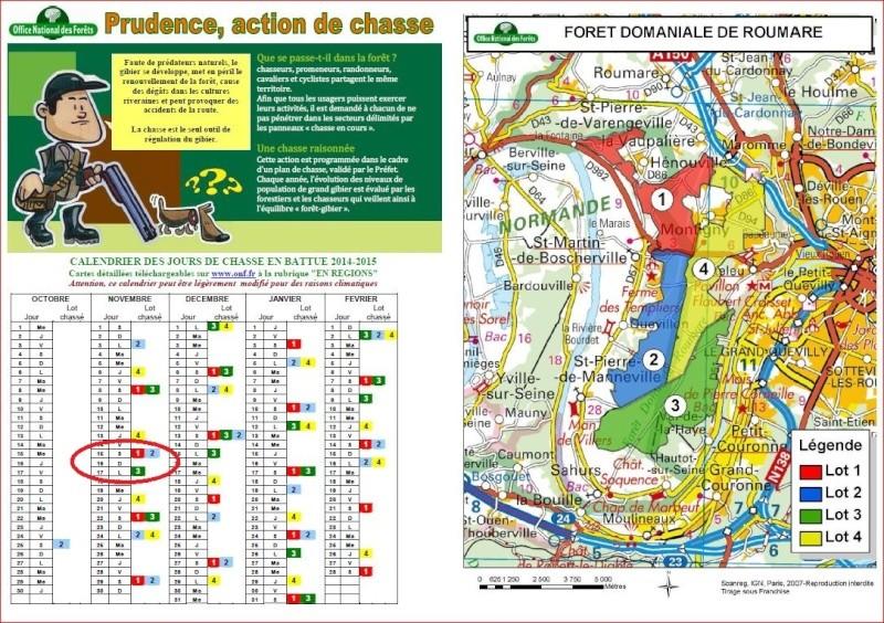 [16 Nov. 2014] Sortie forêt de Roumare 8 h 30 Parc Animalier Chasse10